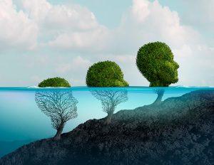 Følelsesmæssig intelligens gør dig istand til selv at vælge den hensigtsmæssig adfærd på vores følelser. Følelsesmæssige intelligens giver dig evnen i at du kan disponere din bevidsthed og du regulere selv dine følelser, tanker og adfærd. At udnytte og bruge følelsesmæssig intelligens kan læres hos Mads Sebbelov