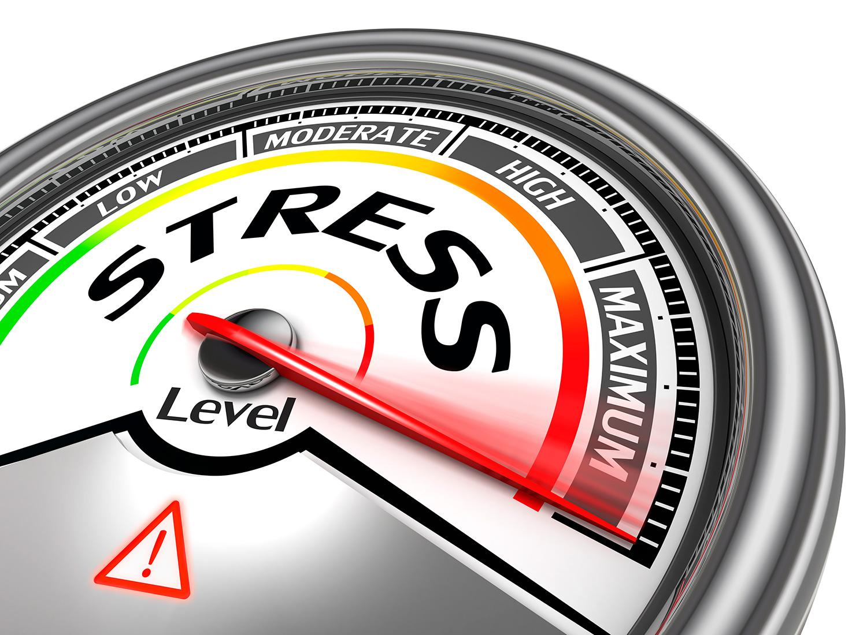 Stresscoach| Mads Sebbelov giver dig redskaber til at håndtere alvorlig og usunde stress